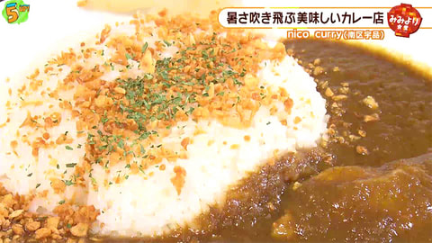 「nico curry」 #41 (2019年6月17日OA)