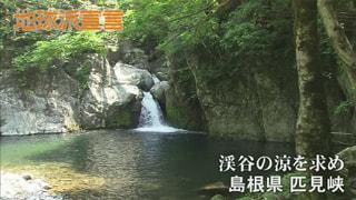 渓谷の涼を求め/カラスアゲハ(島根県)