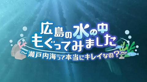 【地球派宣言特別番組】 広島の水の中 もぐってみました~瀬戸内海って本当にキレイなの?~